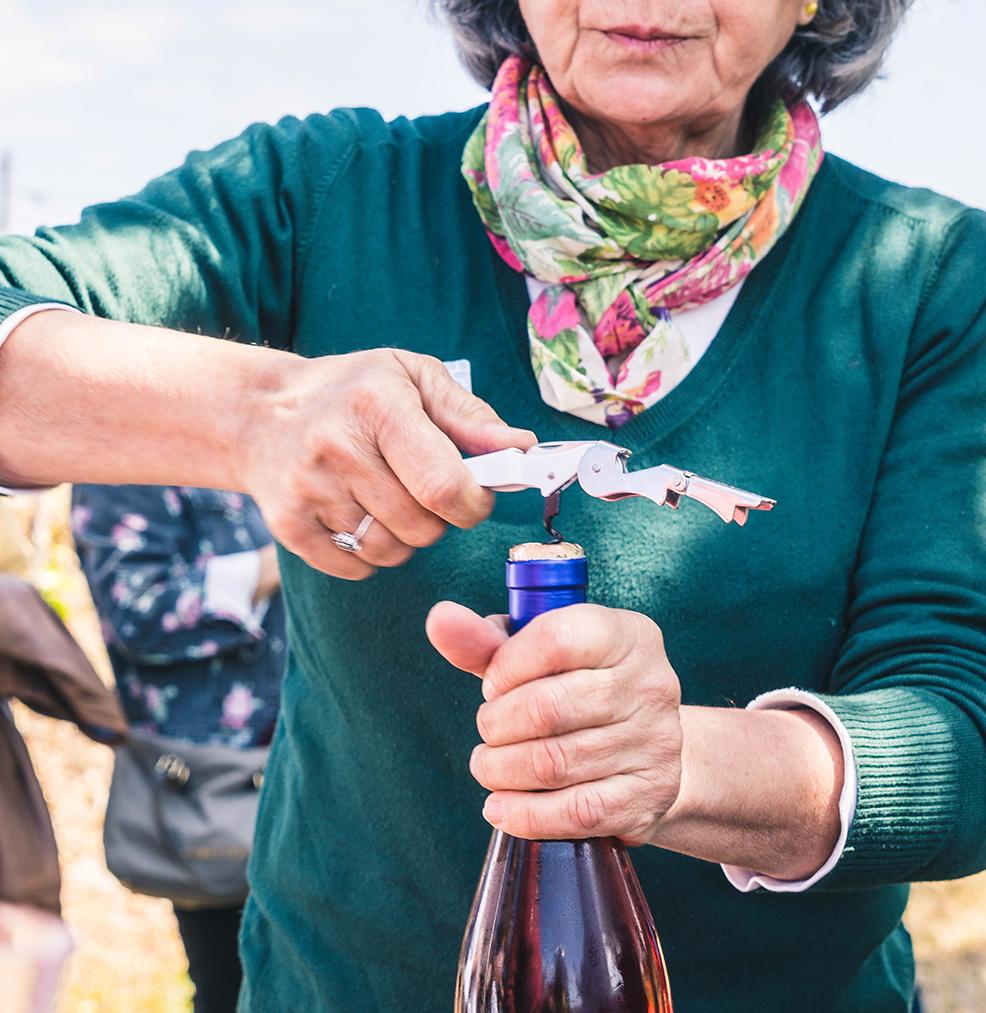 Reservar cata de vino Sevilla