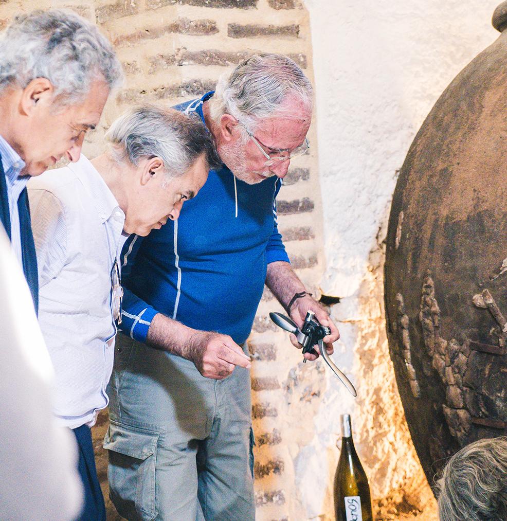 Reservar Cata de Vino en Sevilla
