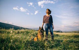 Qué significa pet friendly